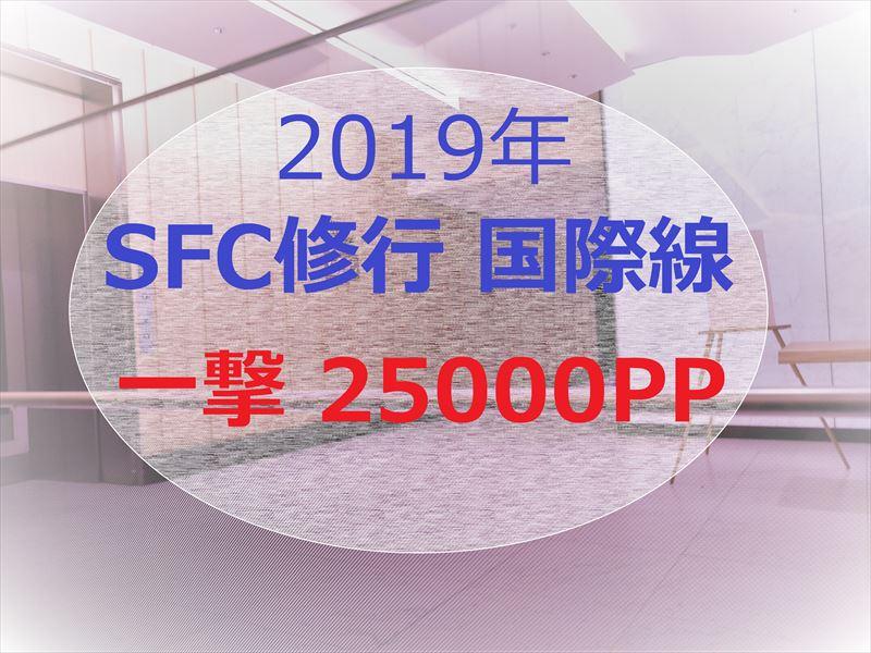 SFC修行 2019  国際線